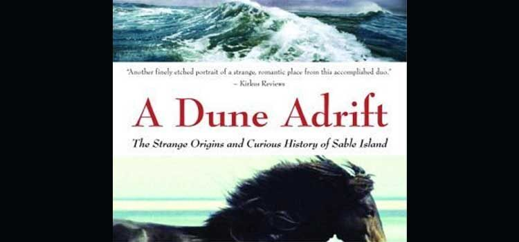 A Dune Adrift by Marq De Villiers and Sheila Hirtle