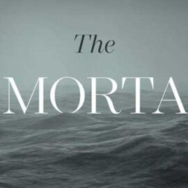The Immortals by Steven Collis